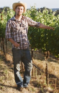 Paul in the vineyard